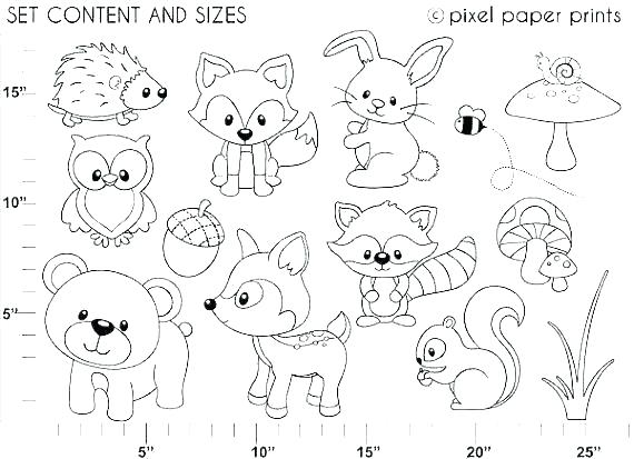570x413 Forest Coloring Pages Coloring Forest S S Forest Coloring Pages