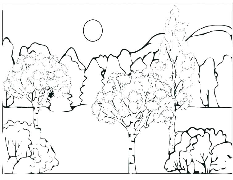 756x585 Forest Colouring Pages Coloring Book Forest Coloring Pages Does