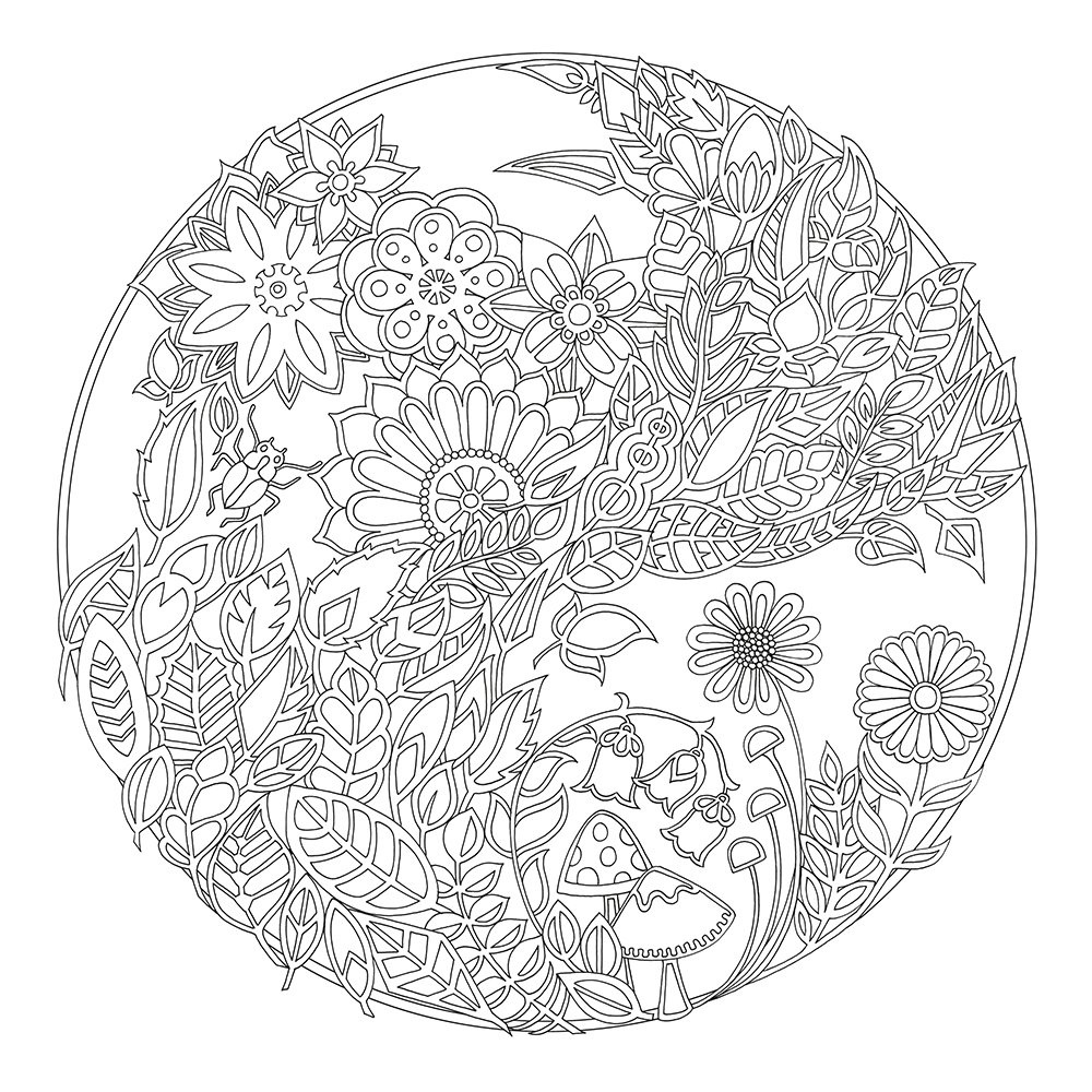 Free Enchanted Forest Coloring Pages At Getdrawings Free Download