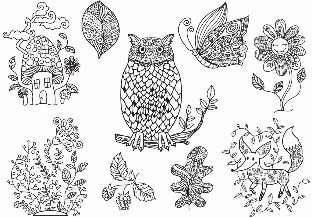 1024x717 Rustic Photograph Of Free Fox Coloring Pages