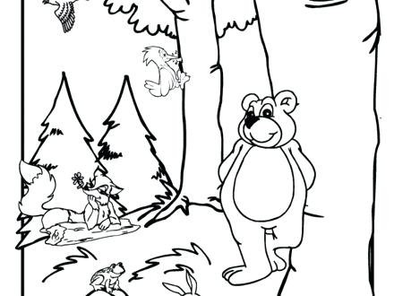 440x330 Temperate Deciduous Forest Coloring Pages Coloring Page Forest