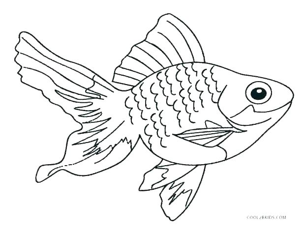 618x474 Real Fish Coloring Pages Aquarium Coloring Page Saltwater Fish