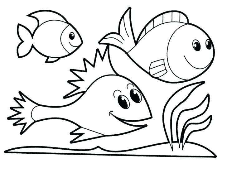 728x555 Printable Fish Coloring Pages Icontent
