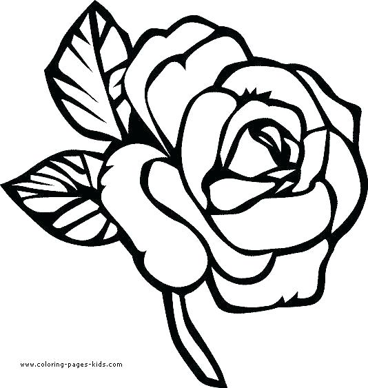 534x563 Coloring Book Pages Flowers Archives Page Of Free Adult