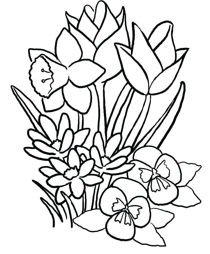 728x878 Flowers Coloring Pages Print Out Flowers Coloring Pages