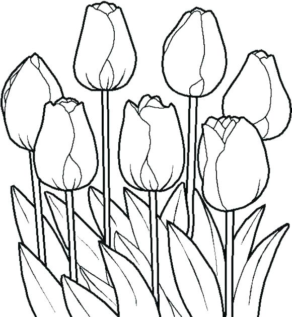 580x630 Free Coloring Pages Of Flowers As Well As Coloring Pages