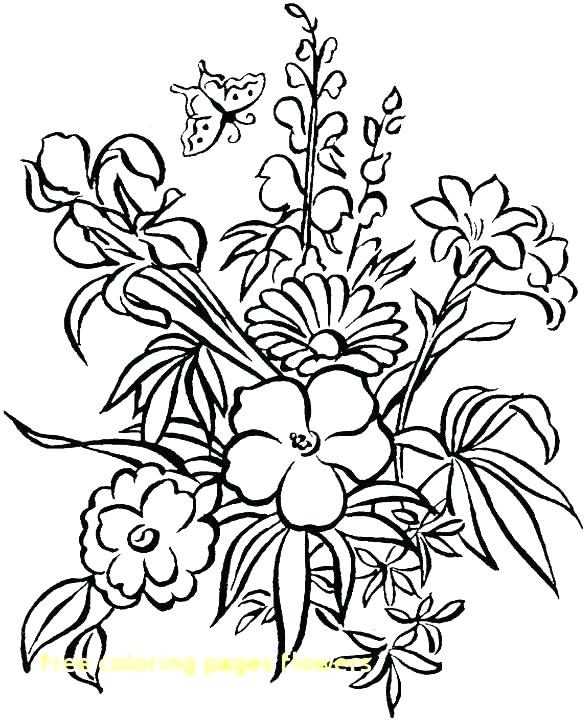 585x720 Coloring Pages Of A Flower Coloring Pages Flowers And Butterflies