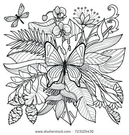 450x470 Coloring Pages Plants Coloring Pages Insects Tropical Flowers