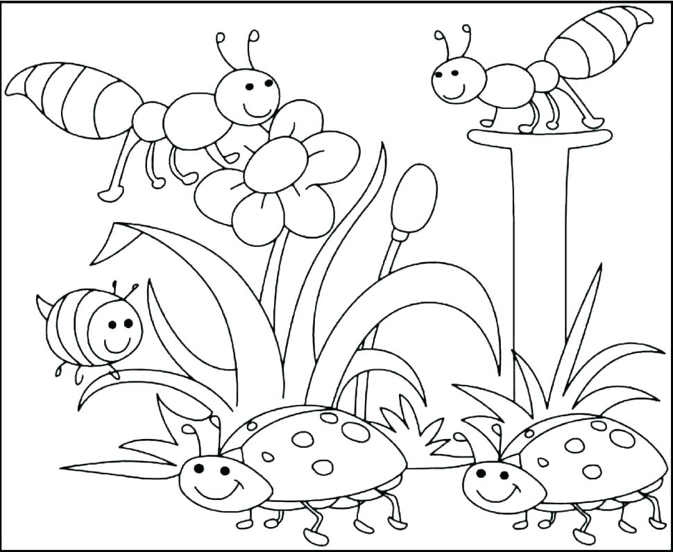 970x796 Hibiscus Coloring Pages Hibiscus Coloring Pages Flower Coloring