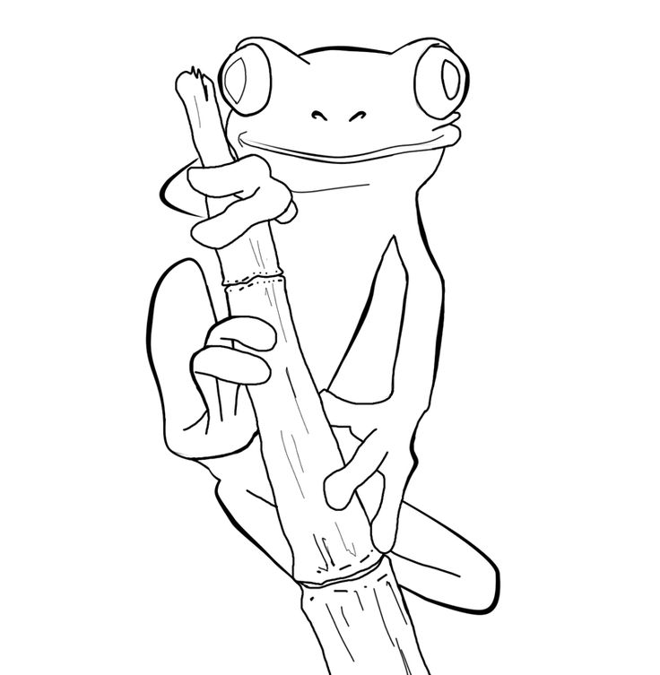 Free Frog Coloring Pages at GetDrawings.com | Free for ...