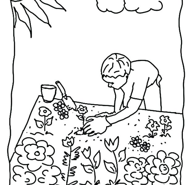 603x600 Garden Coloring Pages Vegetable Coloring Page Free Coloring Pages