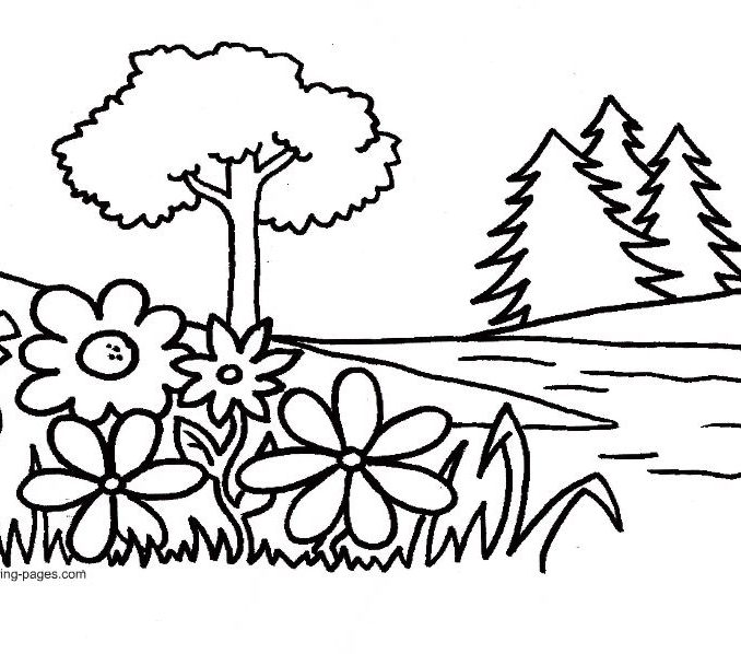 678x598 Garden Pictures To Color Flower Garden Coloring Pages To Download