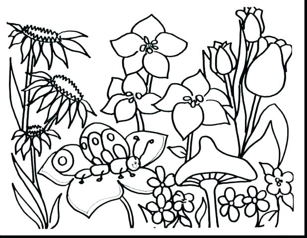 618x478 Free Coloring Pages Flowers Free Printable Coloring Pages Flowers