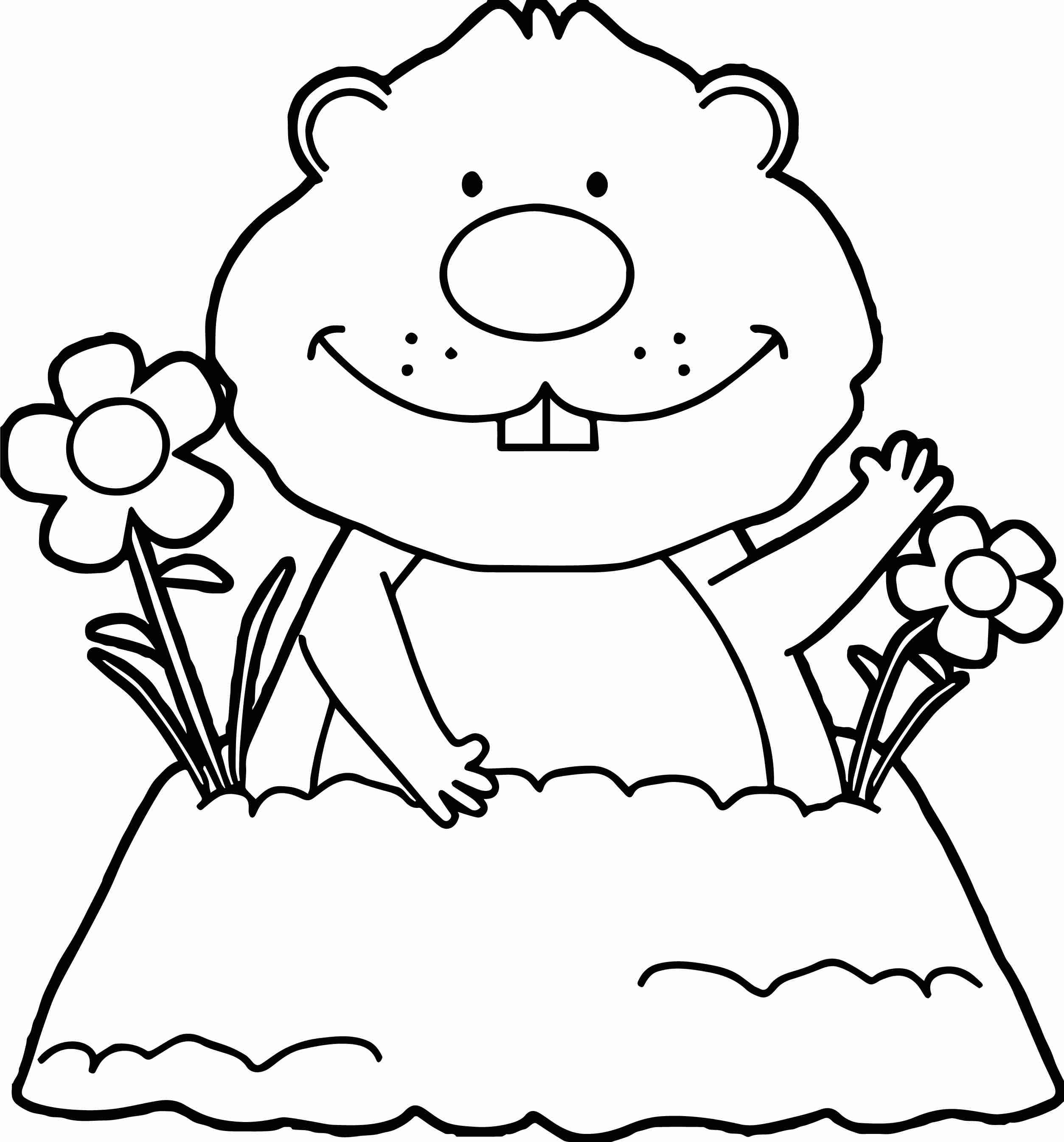 Free Groundhog Coloring Pages At Getdrawings Com Free For Personal