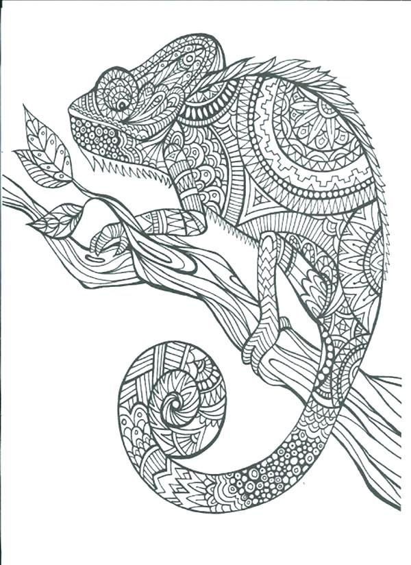 600x825 Free Art Coloring Pages Free Adult Coloring Pages To Print Free