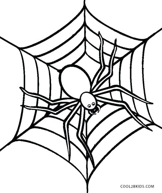 Free Halloween Spider Coloring Pages At Getdrawings Free Download
