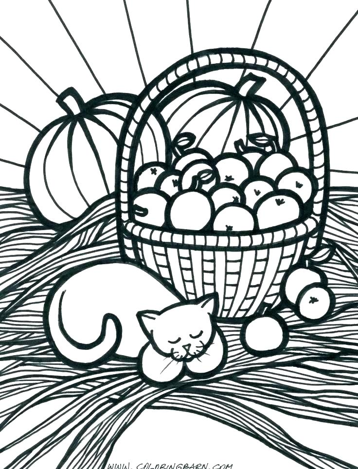 736x964 Fall Harvest Coloring Pages Harvest Colouring Pages Harvest