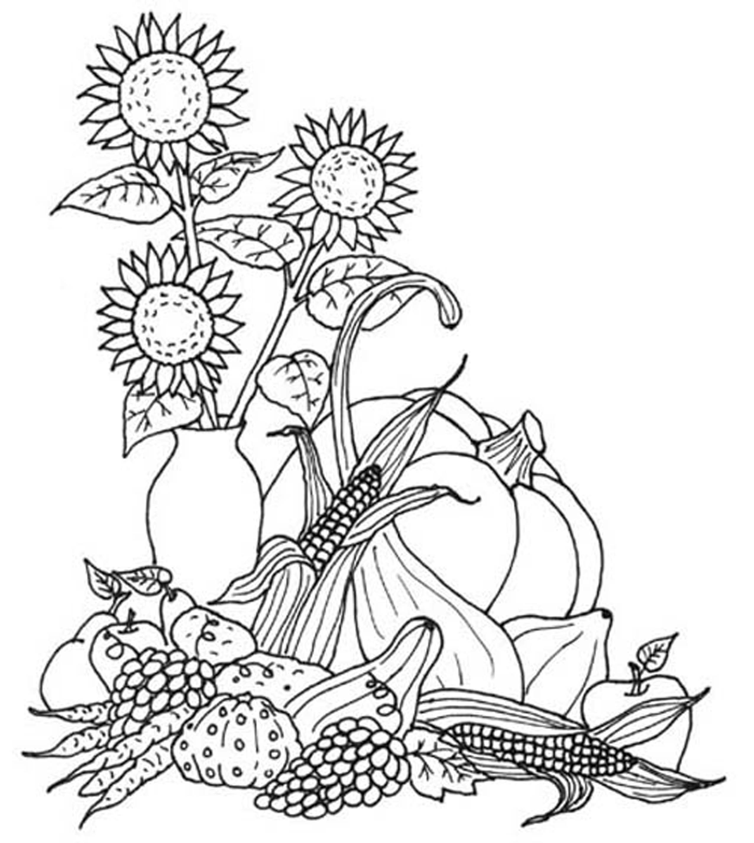 2550x2851 Fresh Harvest Coloring Pictures Autumn Page Fr