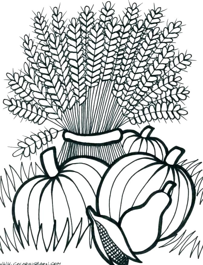 671x879 Harvest Coloring Page Coloring Pages Fall Printable Harvest