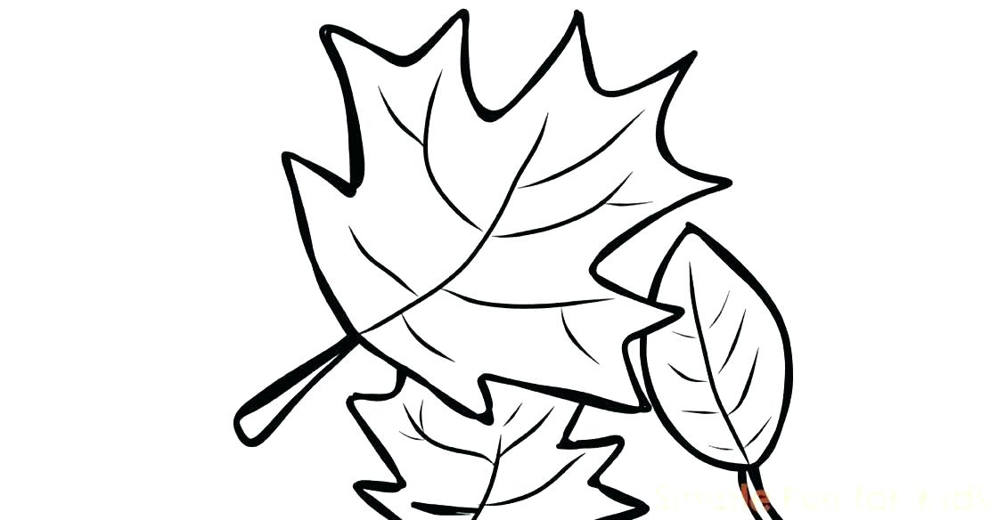 1120x584 Tree Harvest Coloring Pages Free Printable Coloring Tree