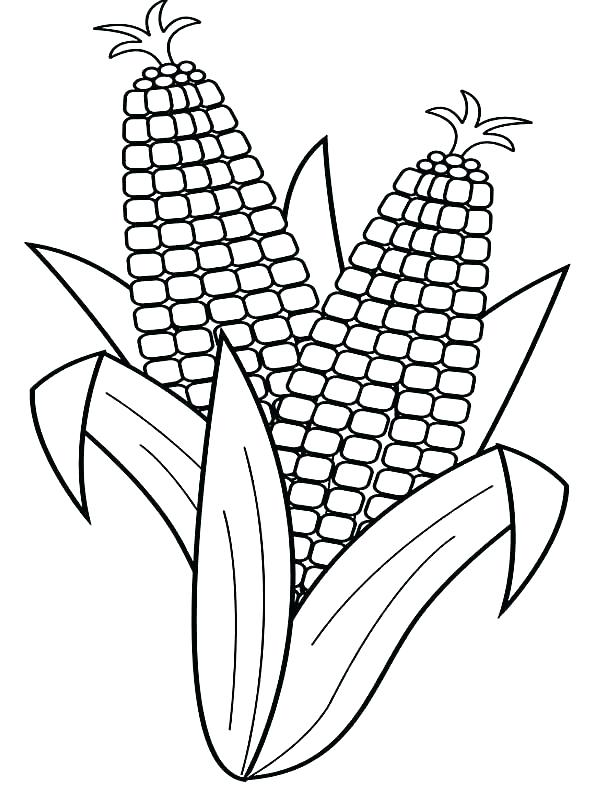 600x790 Harvest Coloring Pages Free