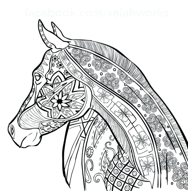 736x747 Horse Color Pages Horse Coloring Page Horse Coloring Pages