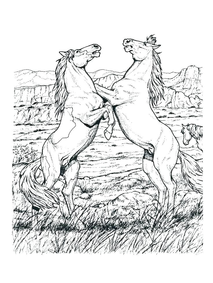 736x981 Horse Coloring Pages For Adults Mustang Horse Coloring Pages Horse