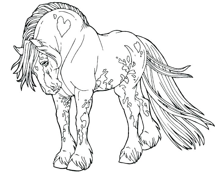 720x598 Free Horse Colouring Pages Online Coloring Page Color Draft Best