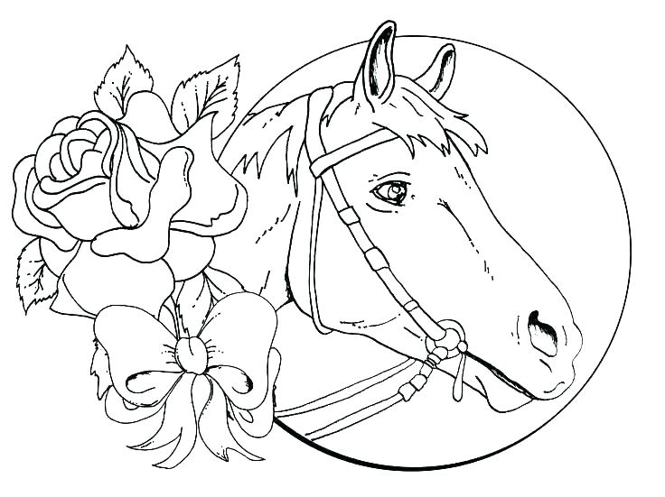 736x551 Horse Coloring Pages Free Stallion Coloring Pages Horse Coloring