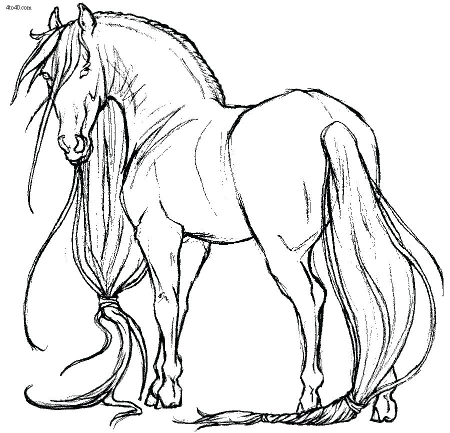 900x865 Horse Coloring Pages Horses Coloring Page Coloring Pages Of Horses