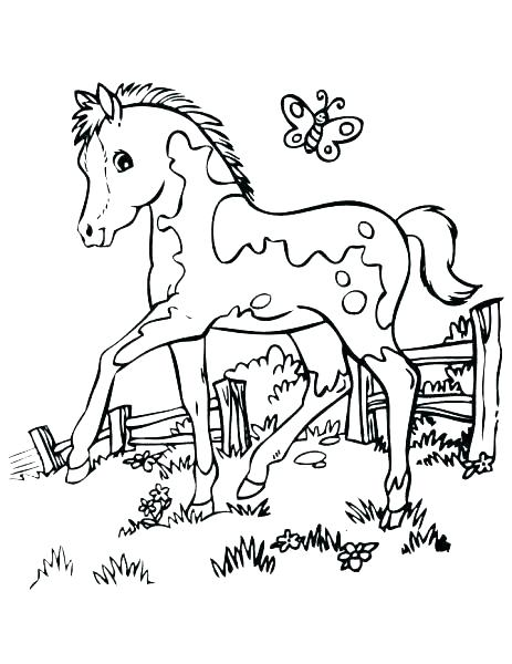 463x600 Horse Coloring Pages That Look Real Free Horses Coloring Pages