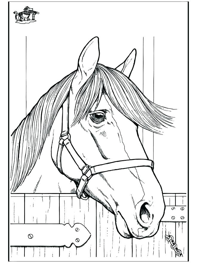 660x880 Coloring Pages For Horses Coloring Pages Horses Animals Coloring