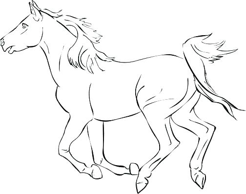 504x397 Horse Pictures To Color For Free Free Coloring Pages For Adults
