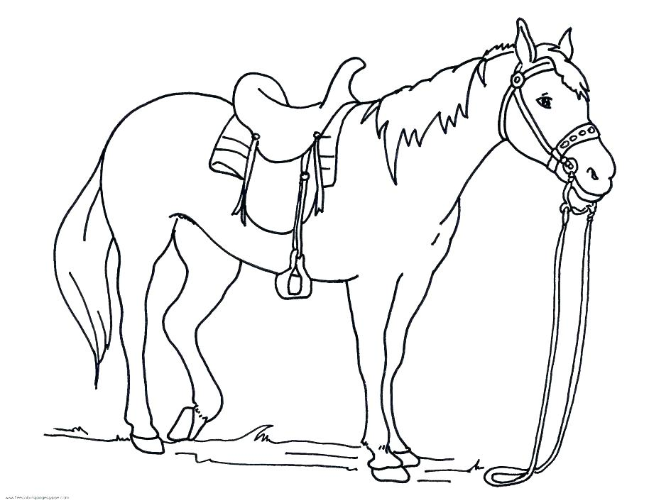 945x709 Horses Coloring Pages Horse Coloring Pages Online Horse Colouring