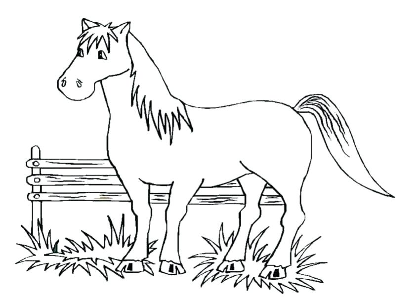 850x601 Horse Coloring Pages Free