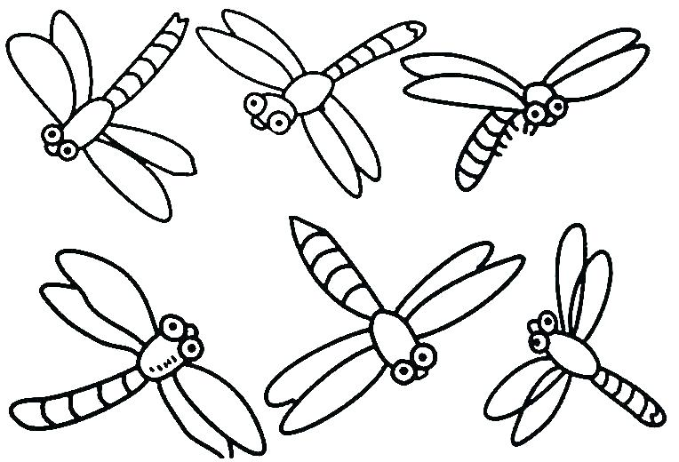 The Best Free Insect Coloring Page Images Download From 50 Free