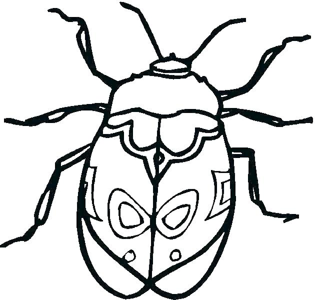 630x600 Bug Coloring Pages Bug Coloring Page Bug Coloring Page Insect