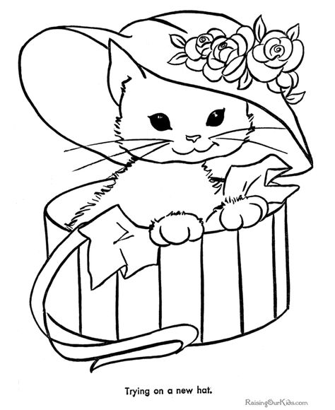 Free Kitten Coloring Pages