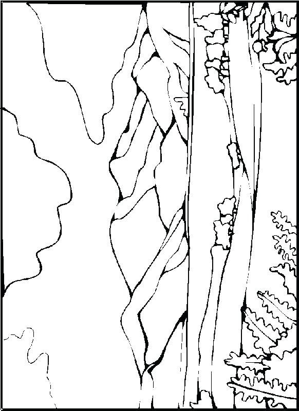 582x800 Landscape Color Pages Free Winter Landscape Coloring Pages