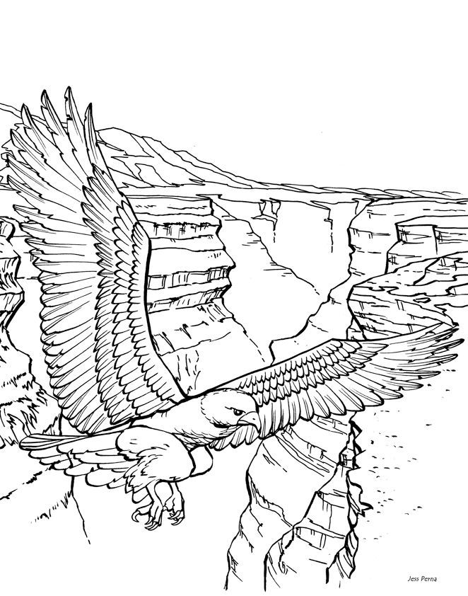 Free Landscape Coloring Pages At Getdrawings Com Free For Personal