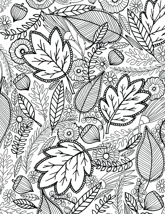 640x829 Free Fall Coloring Pages Fall Color Pages Free Autumn Coloring