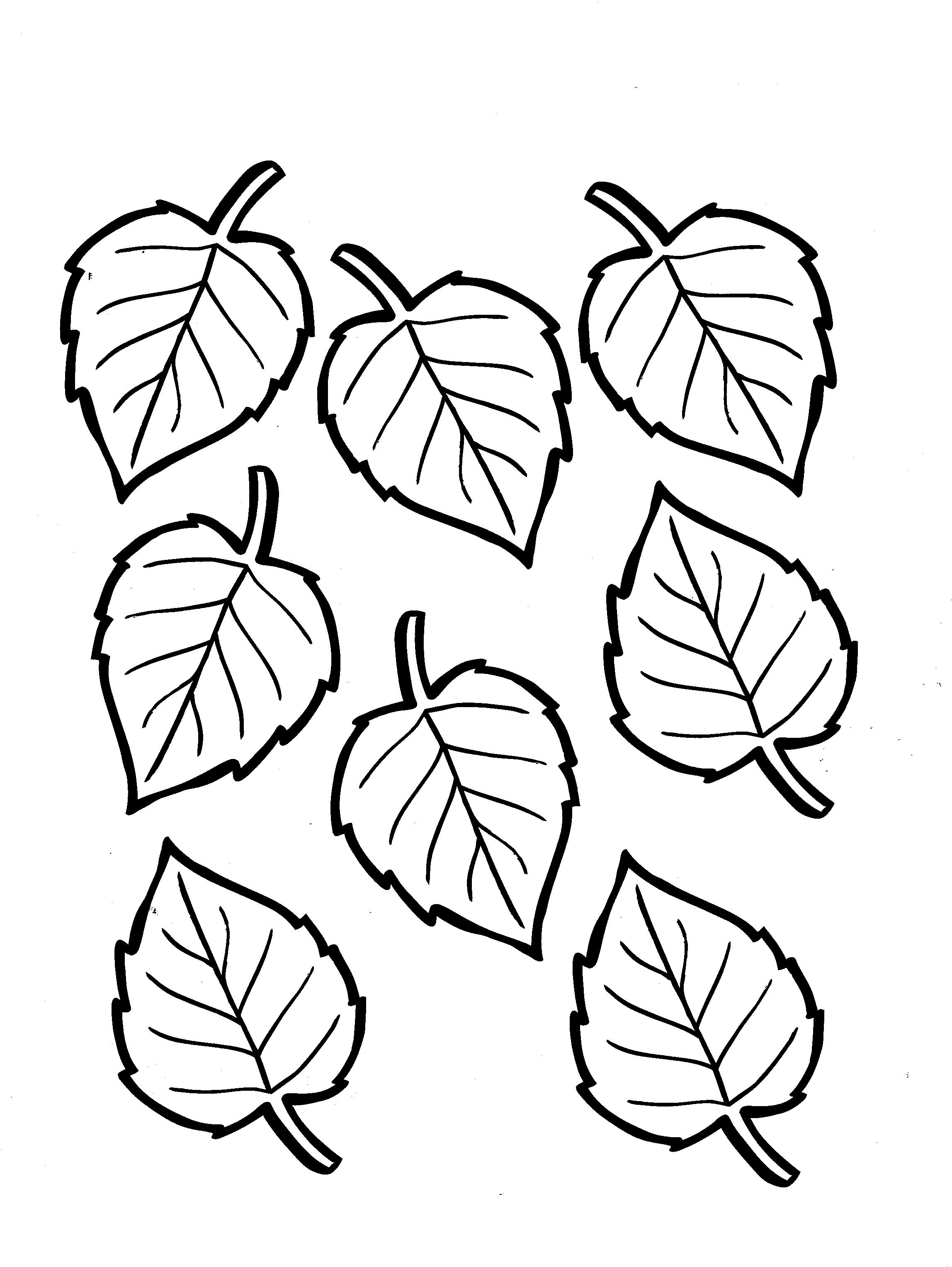 2296x3055 Leaves Coloring Pages Leaf Book Awesome Ribsvigyapan Autumn Fall