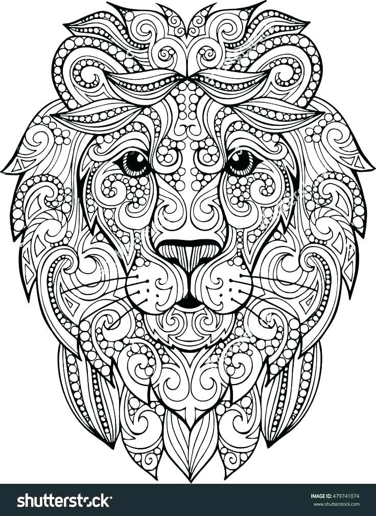 736x1009 Lion Color Page Coloring Page Lion And Mouse Bunga Lion Guard