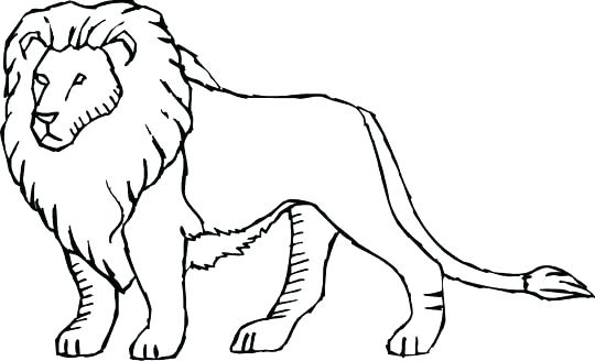 540x328 Lion Coloring Pages Lion Coloring Pages Lion King Coloring Pages