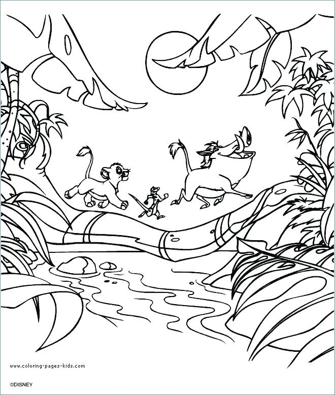 660x778 The Lion King Coloring Pages Free Coloring Sea Lion Coloring Page