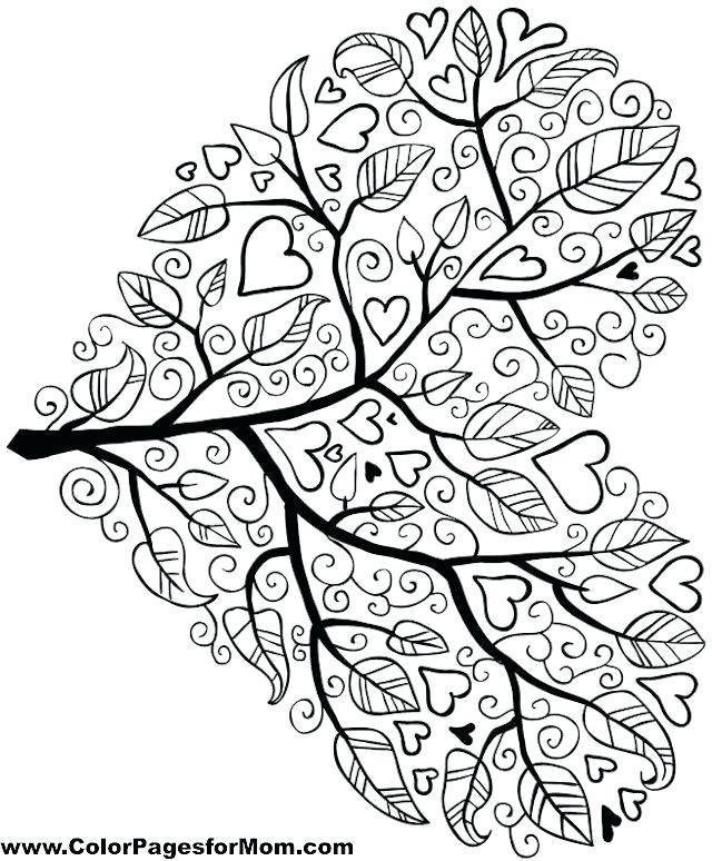 640x774 Free Mandala Coloring Pages Mandalas Coloring Pages Free Free