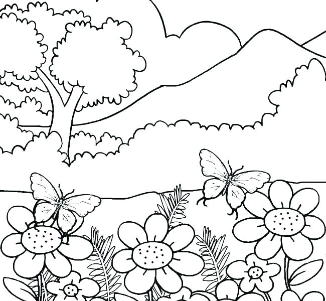 650x600 Nature Scene Coloring Pages Free Nature Coloring Pages Nature
