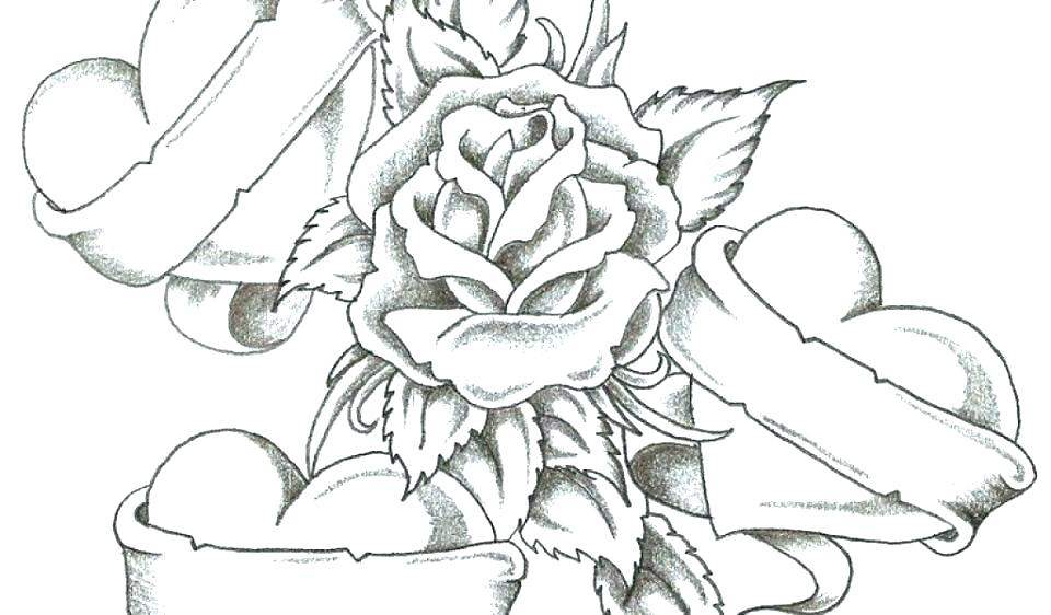 960x562 Roses Coloring Pages Rose Coloring Page Coloring Pictures Of Roses
