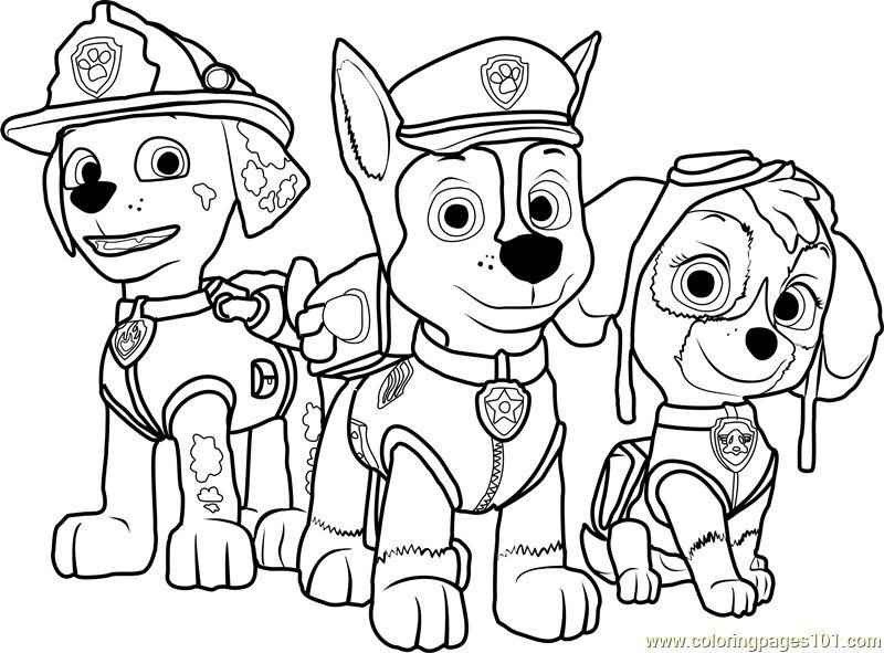 800x591 Coloring Pages Paw Patrol Paw Patrol Coloring Page Free Paw Patrol
