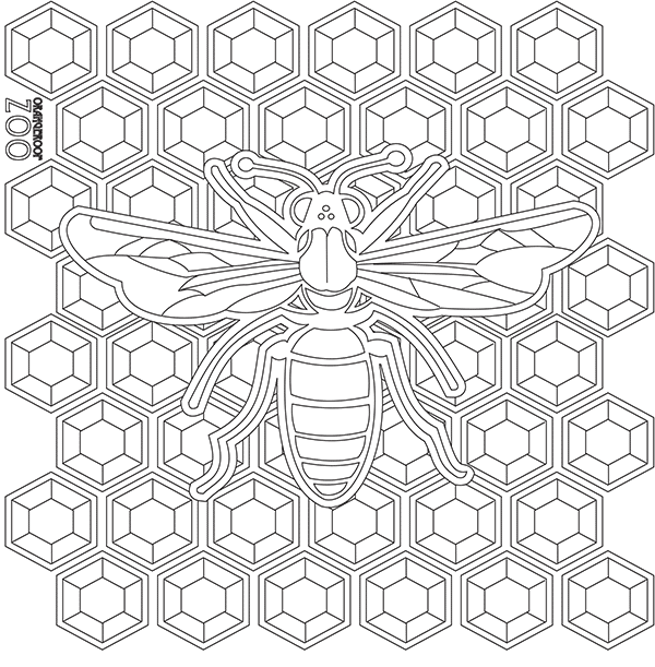 600x611 Free Coloring Pages Orangeroof Zoo
